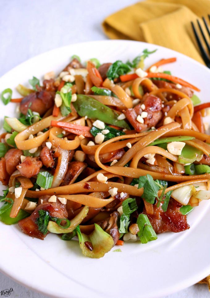 Spicy Thai Noodles Stir Fry - Karyl's Kulinary Krusade