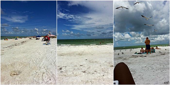 Surf Shack, Tampa FL - Karyl's Kulinary Krusade