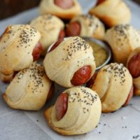 Pigs in an Everything Blanket