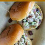 overhead shot of 2 chicken salad sandwiches