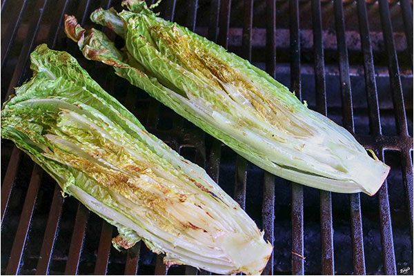 close up shot of romaine hearts on the grill